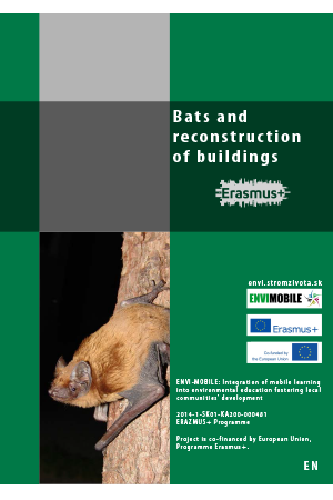 Biodiversity - Bats and reconstruc tion of buildings