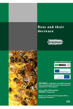 Biodiversity - Bees and their decrease